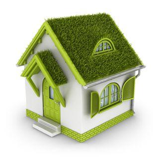 Green house_10908792